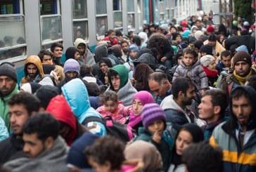 کمک گوگل به پناهندگان بحران مهاجرتی اروپا